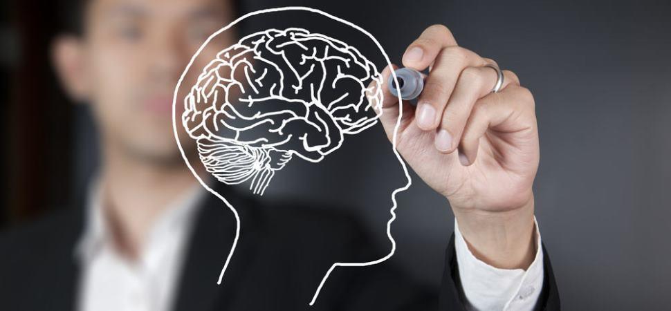 Mendukung Kesehatan Otak