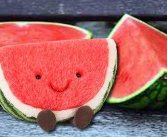 10 Manfaat Buah Semangka untuk Perawatan Kulit Anda