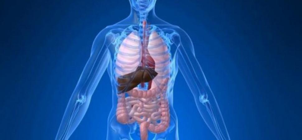 Membuang Racun Dalam Tubuh