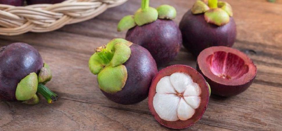 10 Manfaat Buah Manggis yang Membantu Diet & Kesehatan Kulit